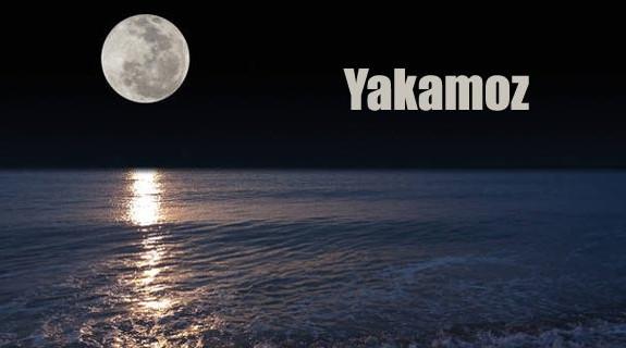 Racconti Darkside- Yakamoz
