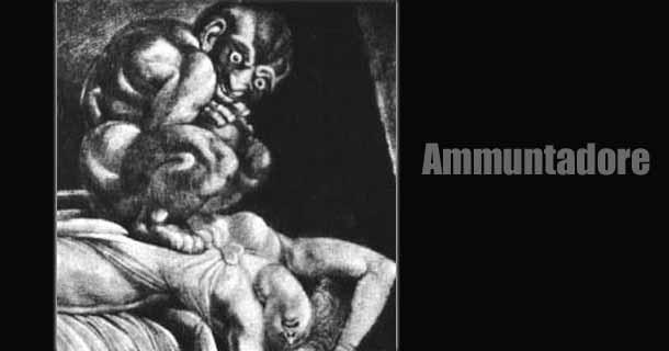 ammuntadore